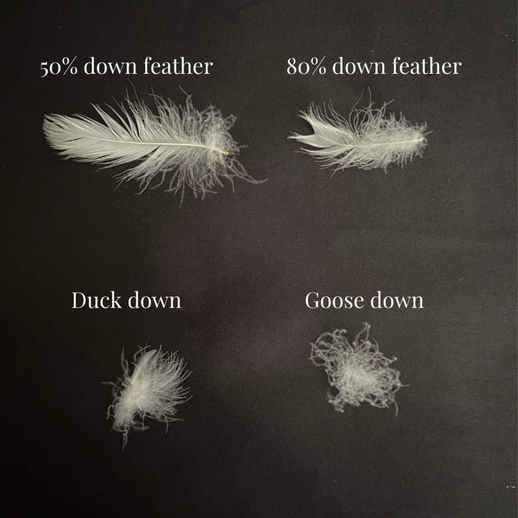 feather versus down for duvet inners